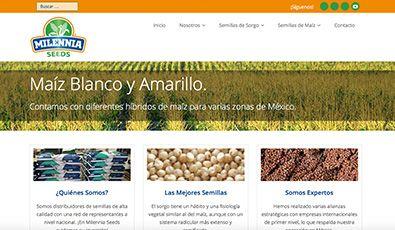 Sitio Web | Milennia